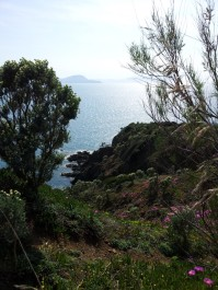 passegiata_botanica2014 (4)