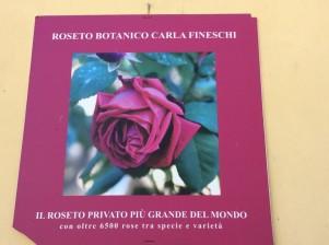 roseto_fineschi (1)